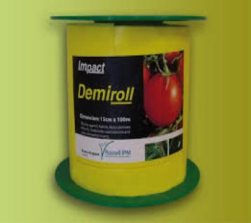 Demerol Impact amarrilla